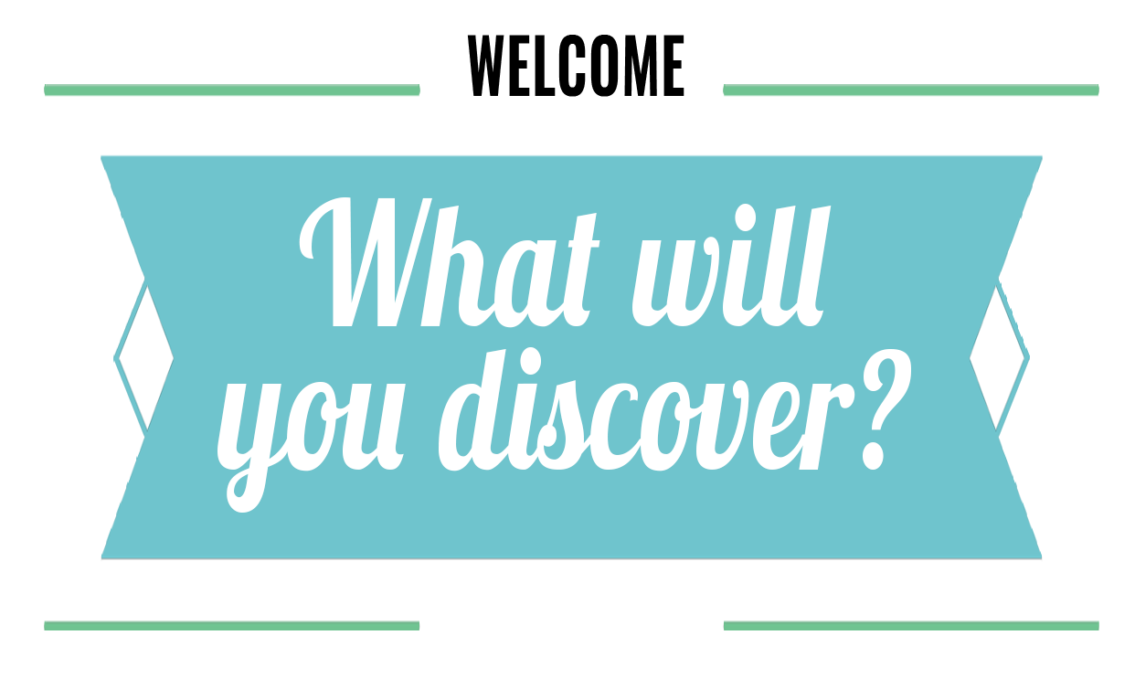 What will you discover